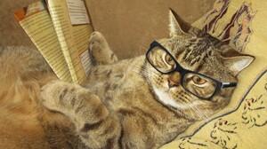 Glasses 2900x2500 Wallpaper