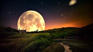 Artistic Grass Horse House Meadow Moon Night Silhouette 1920x1200 Wallpaper