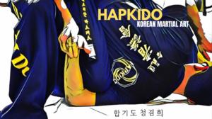 Hapkido Korean Martial Arts Korean 1920x1080 Wallpaper
