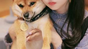 Chinese Long Hair Asian Brunette Women Pigtails Dog 2688x4032 Wallpaper