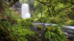River Vegetation 2048x1365 wallpaper