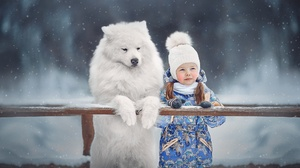 Winter Animal Dog Girl Samoyed 2500x1666 Wallpaper