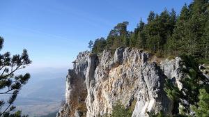 Forest Landscape Mountain Scenic 2000x1205 Wallpaper