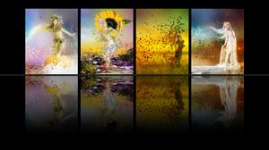Fall Season Spring Summer Winter 1920x1200 wallpaper