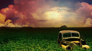 Car Field 2560x1600 Wallpaper
