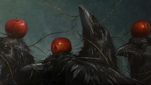 Animal Crow 4741x2667 Wallpaper