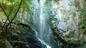 Nature Rock Tree Water Waterfall 1920x1440 Wallpaper