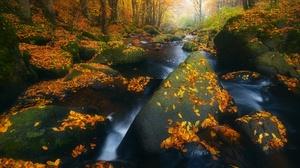 Fall Nature Rock Stream 2048x1367 Wallpaper