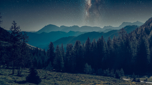 Landscape Forest Nature Trees Stars Starry Night 3000x2000 Wallpaper