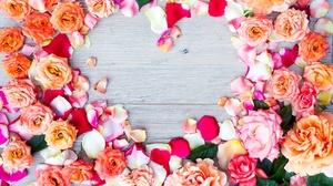 Flower Heart Shaped Orange Flower Orange Rose Petal Pink Flower Pink Rose Red Flower Red Rose Rose 6016x4016 wallpaper