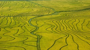 Nature Landscape Green Field River Birds Eye View Rice Paddy Aerial View 1920x1080 Wallpaper