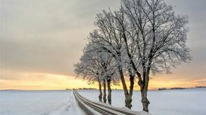 Road Snow Sunset Tree Winter 2560x1707 Wallpaper