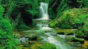Forest Green Nature Waterfall 1920x1080 Wallpaper