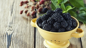 Berry Blackberry Fruit Still Life 2048x1365 Wallpaper