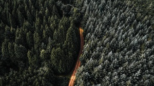 Aerial Forest Road 2048x1365 Wallpaper