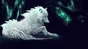 Wolf 5000x3000 Wallpaper