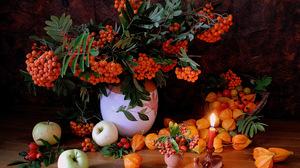 Apple Apricot Berry Candle Fruit Leaf Pitcher Still Life Vase Orange Color 3097x2379 Wallpaper