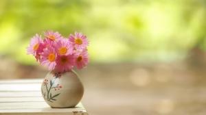 Daisy Flower Vase 2048x1300 Wallpaper