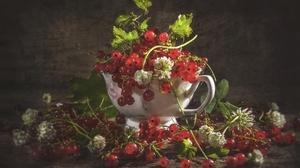 Berry Currants Fruit 1920x1273 Wallpaper