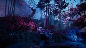 Forest 1920x1080 Wallpaper