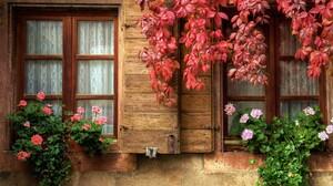 Curtain Fall Flower Ivy Leaf Window 1920x1200 Wallpaper