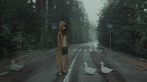 Road Duck Anime Girls Anime Nature Trees Crosswalk Raincoat Artwork PANP 2560x1440 Wallpaper
