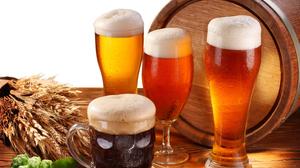 Alcohol Barrel Beer Drink Glass Still Life 5511x4676 Wallpaper