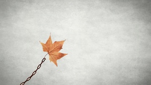 Chain Leaf Minimalist 2048x1365 Wallpaper