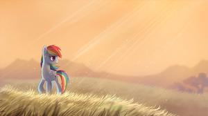 Grass My Little Pony Rainbow Dash Sunbeam 1920x1080 Wallpaper