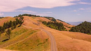 San Francisco Portrait Display Trees Nature Hill Landscape Clouds Road 1364x2048 Wallpaper