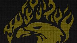 Bird Eagle Flame 1920x1446 Wallpaper