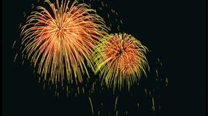 Colorful Dark Fireworks Night Sky 1920x1200 Wallpaper