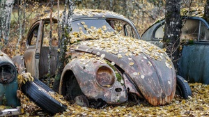 Car Volkswagen Rust Old Leaves Outdoors Wreck Vehicle 2560x1440 Wallpaper