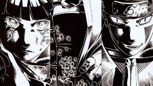 Inuzuka Kiba Hyuuga Hinata Aburame Shino Anime 1236x1153 Wallpaper