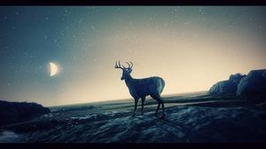 Deer Grand Theft Auto V Moon Night Stars 1907x1041 wallpaper