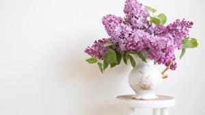 Flower Lilac Pitcher 1920x1408 Wallpaper