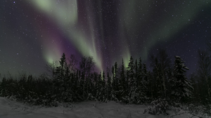 Aurora Borealis Nature Night Sky Start Winter 3868x2189 Wallpaper