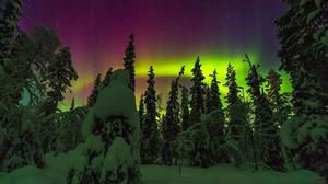 Aurora Borealis Light Nature Night Sky Snow Tree Winter 1920x1258 Wallpaper