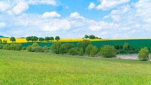 Field Grass Cloud Bush Sky Rapeseed 3840x2160 wallpaper
