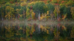 Foliage Lake Nature Reflection 2048x1268 wallpaper