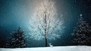 Artistic Bunny Snow Winter 4640x2610 Wallpaper