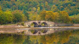 Artistic Bridge Fall 3840x2160 Wallpaper