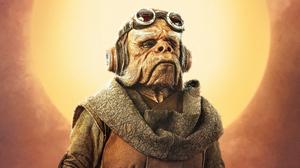 Kuiil Star Wars Star Wars The Mandalorian Tv Show 3334x1875 Wallpaper