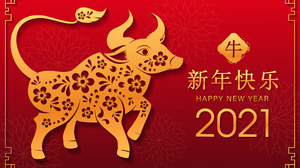 Holiday Chinese New Year 5000x3333 wallpaper