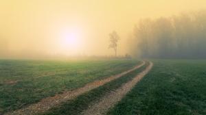Field Fog Forest Path Sun 3840x2160 Wallpaper