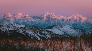 Landscape Nature Mountains Snowy Mountain Pine Trees Forest Winter Snow 2048x1364 Wallpaper