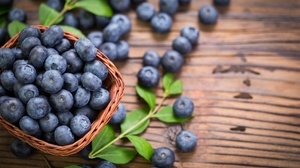 Berry Blueberry Fruit 5231x3262 wallpaper