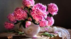 Flower Peony Pink Flower Scarf Shell Still Life Vase 2500x1823 Wallpaper