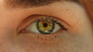 Eyes People Green Eyes Freckles Eyebrows Redhead 4752x3168 Wallpaper