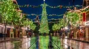 California Christmas Christmas Lights Christmas Tree Disneyland 1920x1280 Wallpaper
